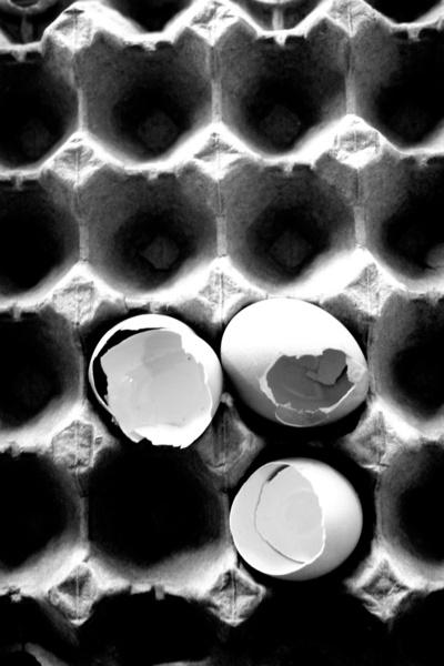 Eggs. Serena Wilson Stubson, society6